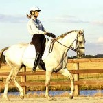 Equine_Online-280a